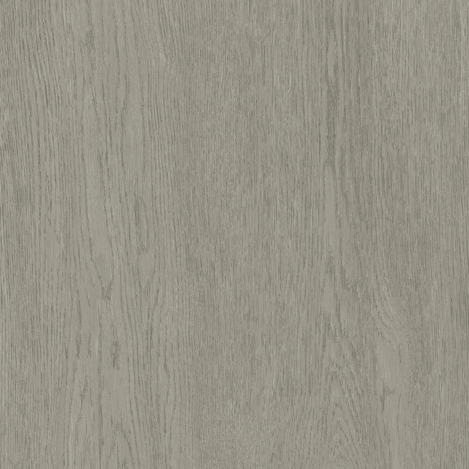 Oak Tree GREY